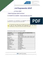 Documento Estandares de Programacion ABAP