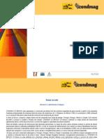 CONDMAG March 2015 - Restructuring Plan Status