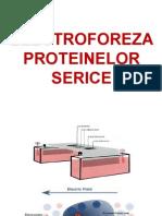 1. Electroforeza Proteinelor Serice