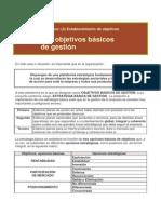 H306 Objetivos Básicos de Gestión