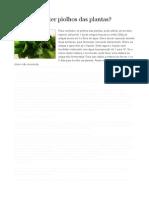 tratamentos caseiros plantas