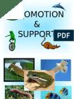 Locomotion & Support