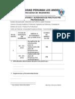 Ficha Practica Pre Profesionales