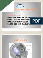Bio Perixosomas