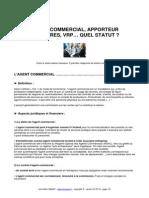 commerciaux-statuts.pdf