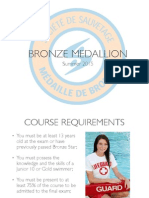 bronze medallion 1  compressed