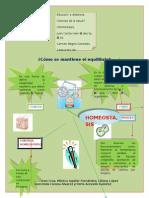 EAD1311051_Homeostasis.doc