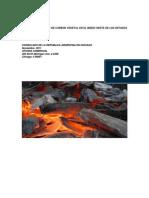 ESTUDIO DE MERCADO CARBON VEGETAL 2011.pdf