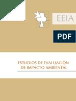 Instructivo General - Revisión de EEIAs