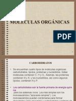 MOLÉCULAS ORGÁNICAS