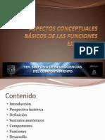 FUNCIONES EJECUTIVAS ( PSICOLOGIA)