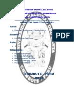 Informe Garantias Constitucionales 1