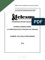 DERECHO INFORME COMPETENCIA PROCESO CIVIL+