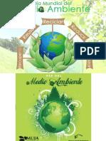 Dia Del Medio Ambiente 2015