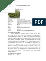 Laporan Praktikum Botani - Komponen Protoplasmik Dan Rhizoma