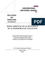 Bases Geneticas de La Deficiencia de La Adherencia de Leucocitos