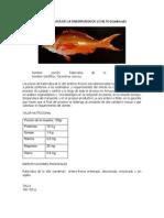 CADERNAL PDF.pdf