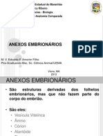 ANEXOS EM...pdf