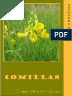 Guia Botanica