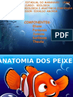 anatomia peixesss 2.pptx