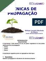 Tecnicas de Propagacao de Plantas