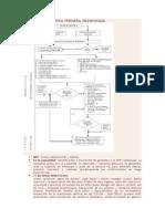 Fluxograma Control Prenatal Reenfocada