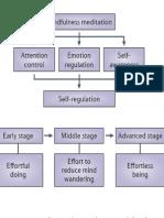The neuroscience of mindfulness meditation.