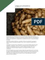 La Agricultura Ecológica en Latinoamérica