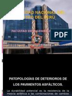 Patologia Del Asfalto
