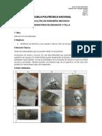 informe_1_identificar_defectos.docx