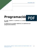 EFH___98188266-NPV-CAPITULO5-2program