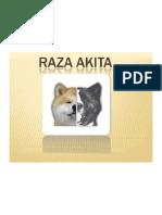 El Akita