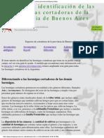 Guía Para Identificación de Las Hormigas Cortadoras de BsAs