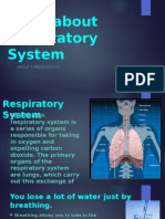 Facts About Respiratory System
