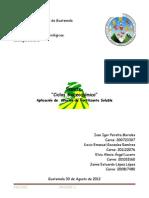 Reporte Ciclos Biogeoquimicos