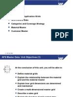 02 ICP310 SAP AFS MasterData