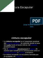 cinturaescapular-140610190337-phpapp02