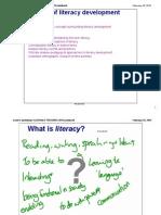 l5 literacy development 2015