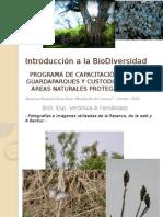 Introd Biodiv Cerrito- Verónicafernandez