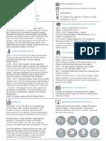 Peter Lunt CV.pdf