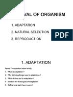 Survival of Organism 2