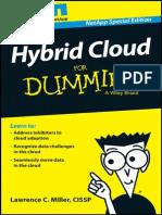 Rp Hybrid Cloud Dummies