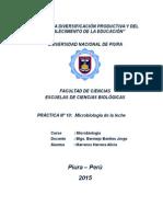 informe 10 listo listo.docx