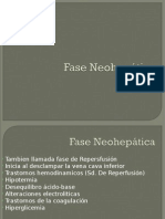 Fase Neohepática