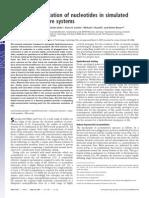 acumulación extrema de nucleotidos en simulación hidrotermal