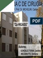 111-cancerdehgado-111014065526-phpapp01