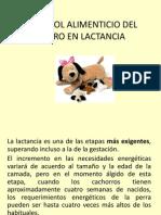 05.1 Control Alimenticio de Perras en Lactancia