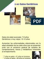 08.2 Control Alimenticio de Gatos Geriátricos