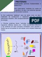 Tema4_Proteinas