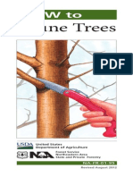 How to Prune Trees (US Forestry Service)